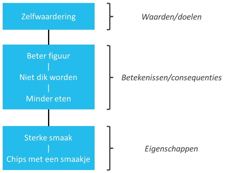 betekenisstructuuranalyse-bsa-van-reynolds-en-gutman-figuur-2