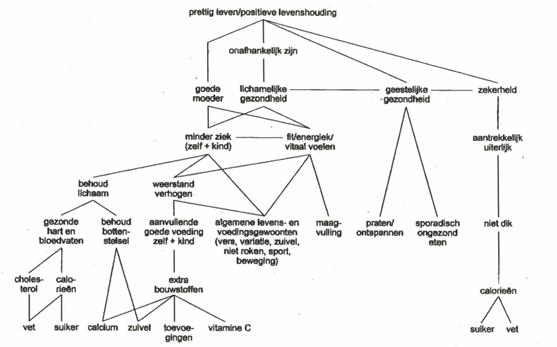 betekenisstructuuranalyse-bsa-van-reynolds-en-gutman-figuur-3
